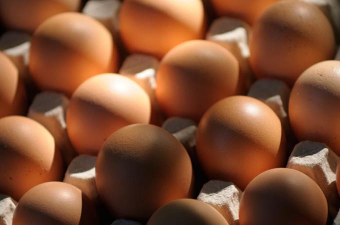 Op eieren broeden